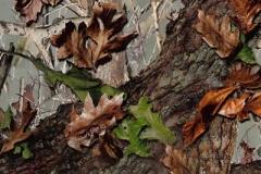 WTP-419 Timbers Edge Camo