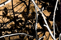 WTP-536 Outshine Camouflage