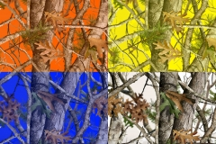 WTP-845 Vista Micro Colors