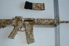guns (9)