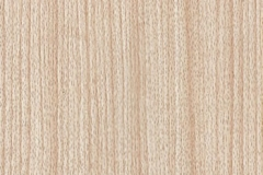 WTP-223 Red Oak