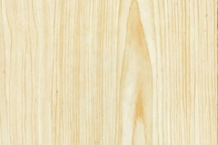 WTP-283 Blonde Wood Grain