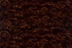 WTP-302 Cocoa Burlwood
